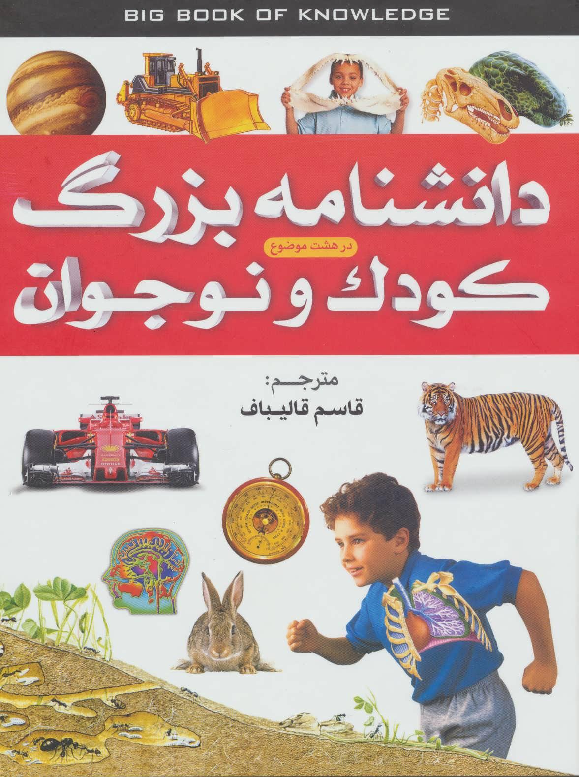 کتاب دانشنامه بزرگ کودک و نوجوان