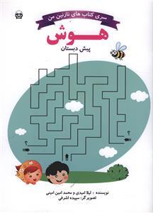 کتاب هوش پیش دبستانی