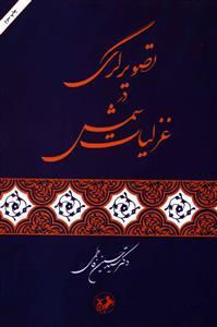 کتاب تصویرگری در غزلیات شمس با اضافات