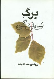 کتاب برگ بیبرگی (مجموعه مقالات فرهنگی)