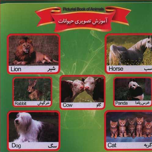 کتاب آموزش تصویری حیوانات