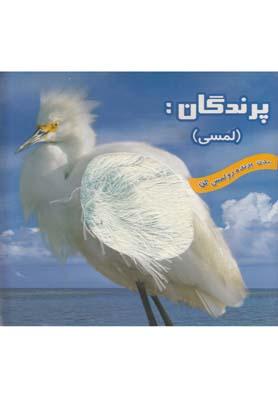 کتاب پرندگان (لمسی)
